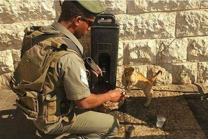 Żołnierze i zwierzaki 11
