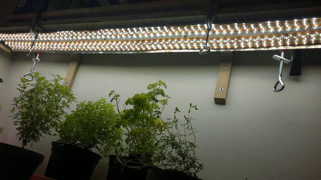 LED-valo