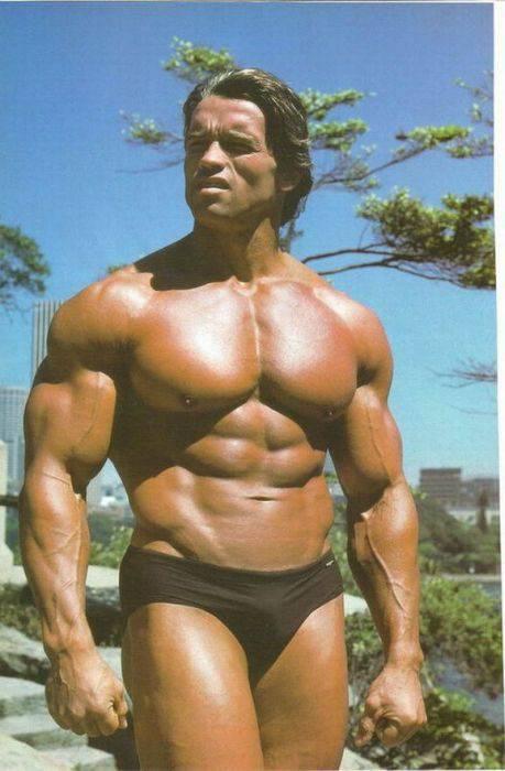 Arnold Schwarzenegger 64