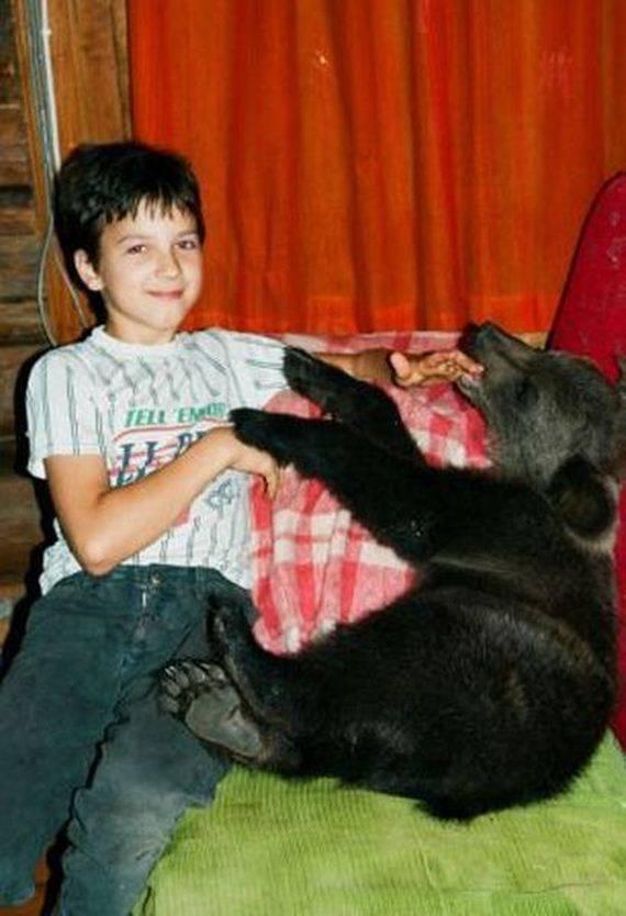 Porzucony niedźwiadek 18