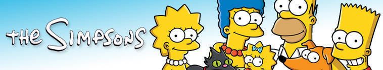 The Simpsons S25E13 480p HDTV-DLBR mkv