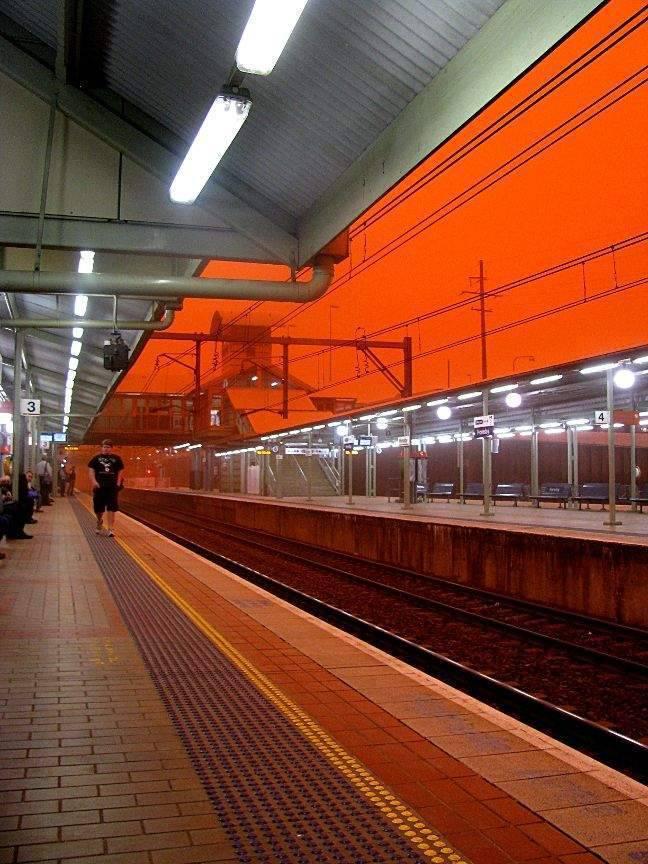 Pomarańczowe Sydney 34
