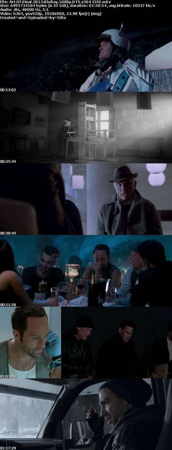 Art Of Steal 2013 BluRay 1080p DTS x264-CHD