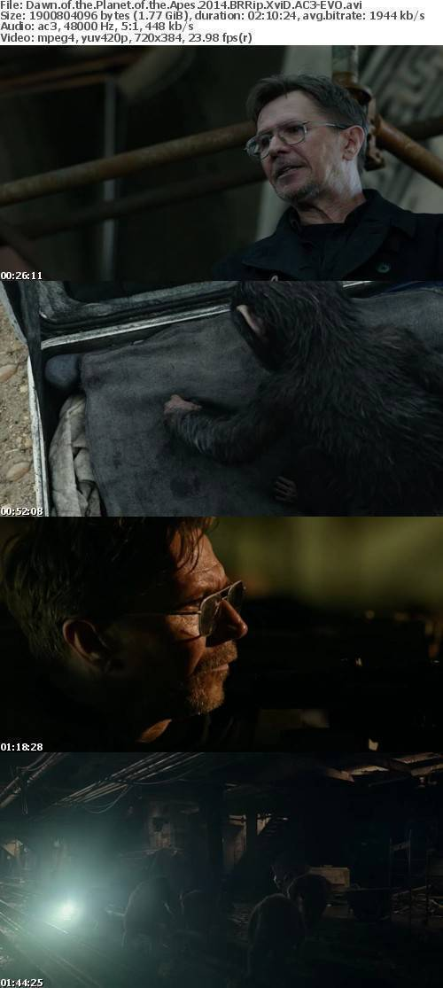 Dawn of the Planet of the Apes 2014 BRRip XviD AC3-EVO