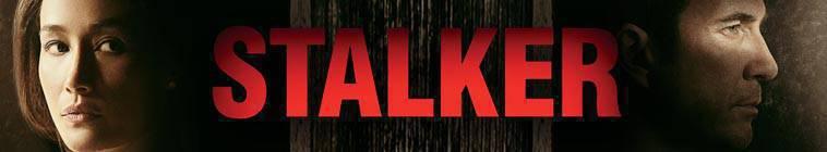 Stalker S01E11 HDTV XviD-AFG