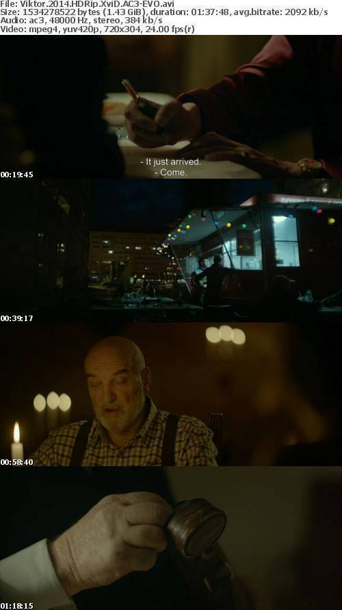 Viktor 2014 HDRip XviD AC3-EVO