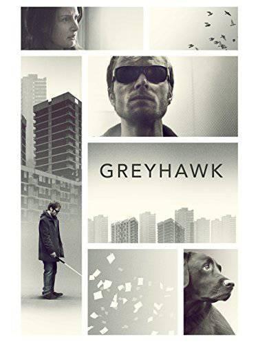 Greyhawk (2014) WEBRip X264 AC3-PLAYNOW mkv