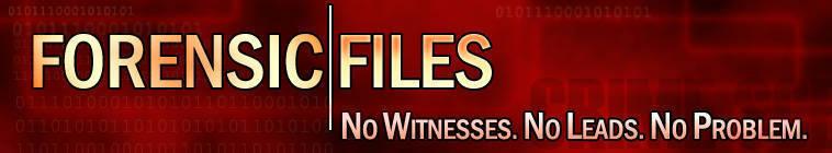 Forensic Files S10E34 Bump in the Night DSR x264-W4F