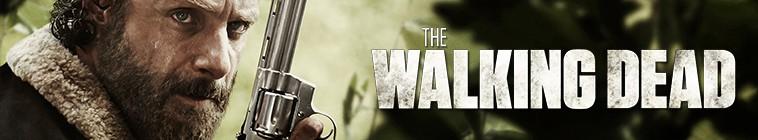 The Walking Dead S06E15 720p HDTV x264 AAC-ETRG