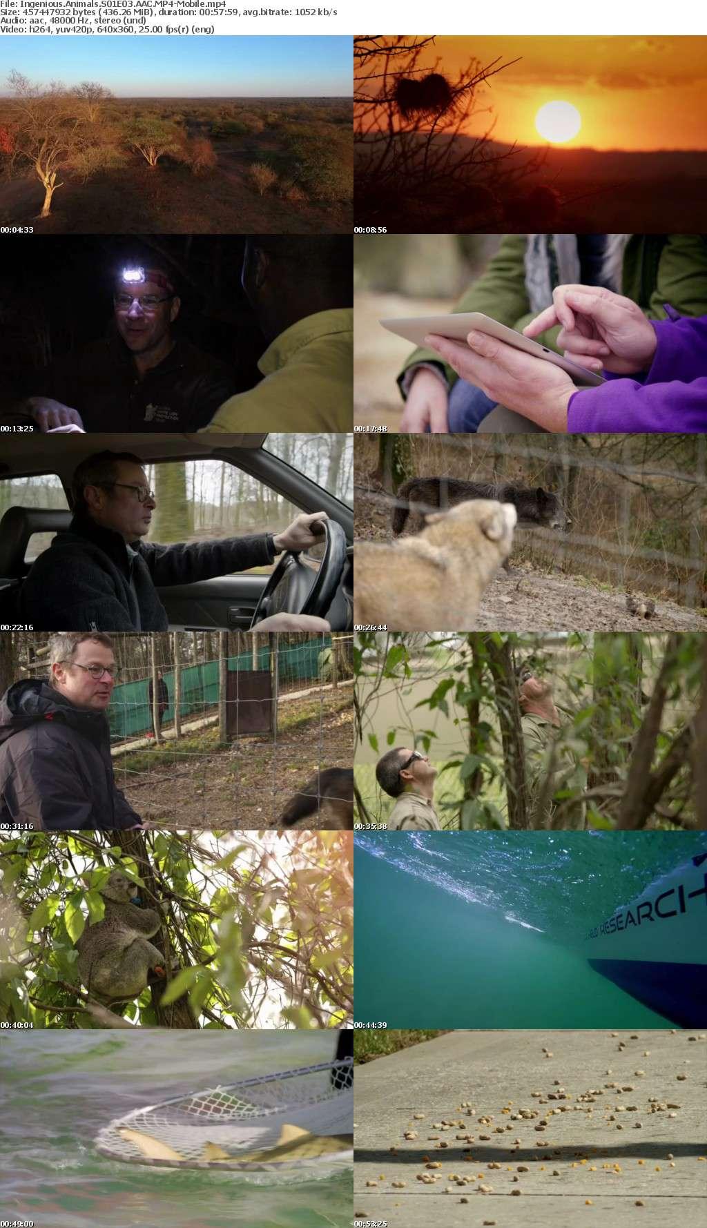Ingenious Animals S01E03 AAC-Mobile