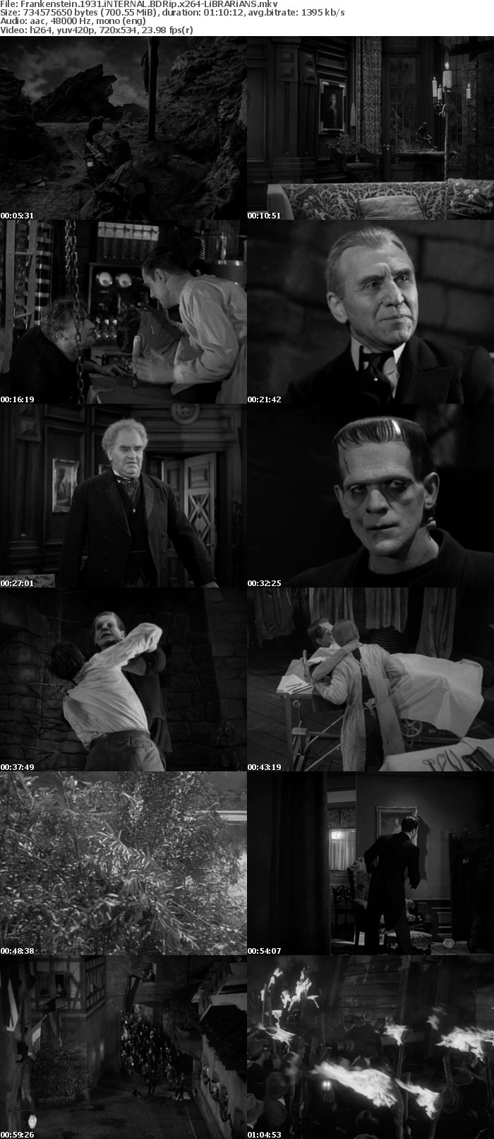 Frankenstein 1931 iNTERNAL BDRip x264-LiBRARiANS