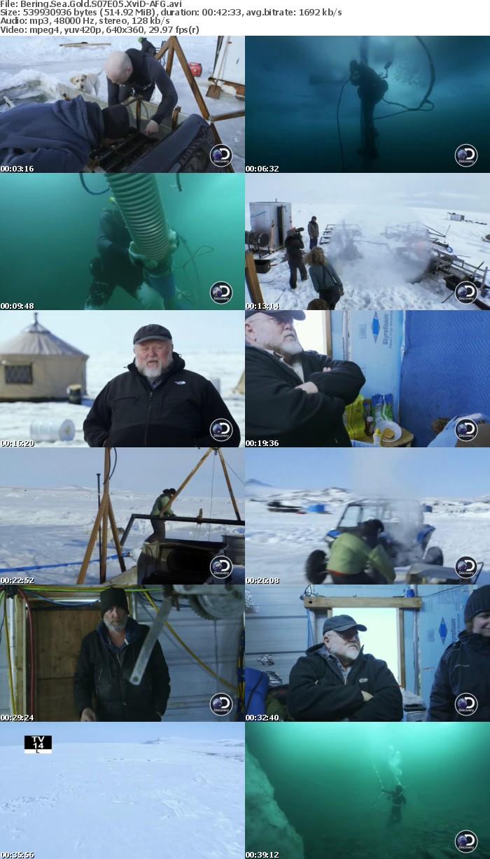 Bering Sea Gold S07E05 XviD-AFG
