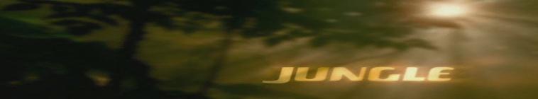 Jungle 2 Jungle 1997 AAC-Mobile