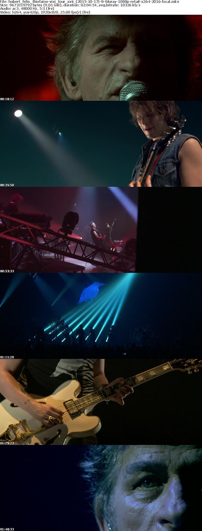 Hubert Felix Thiefaine-VIXI Tour XVII (2015-10-17)-FR-BluRay-1080p-RETAIL-x264-2016-FOCAL