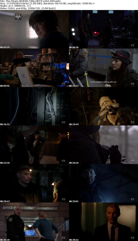 The Strain S03E06 720p HDTV x264-AVS