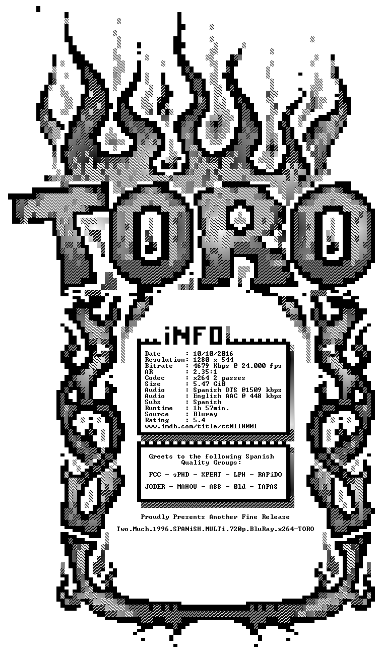 Two Much 1996 SPANiSH MULTi 720p BluRay x264-TORO