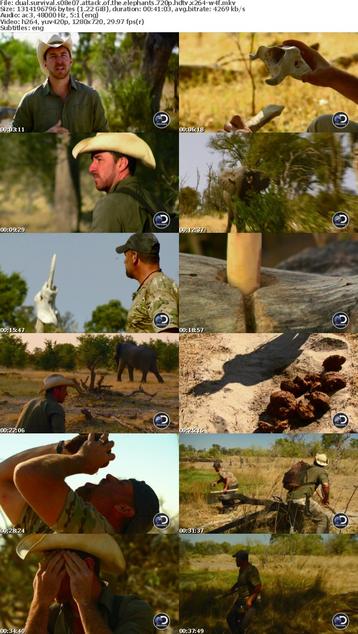 Dual Survival S08E07 Attack of the Elephants 720p HDTV x264-W4F