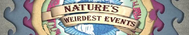 Natures Weirdest Events S05E03 720p HEVC x265-MeGusta