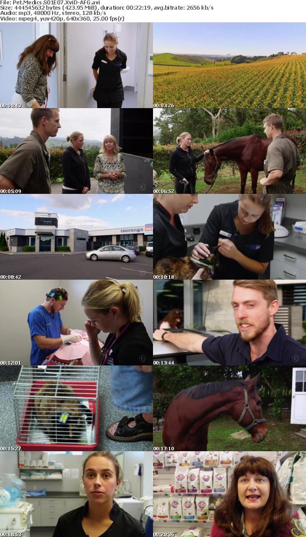 Pet Medics S01E07 XviD-AFG