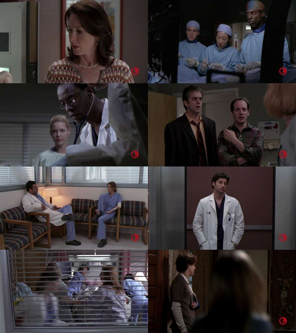 Grey Anatomy S10e11 Download Xsonarincome