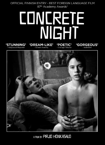 Concrete Night (2013) 480p Brrip X264-msd
