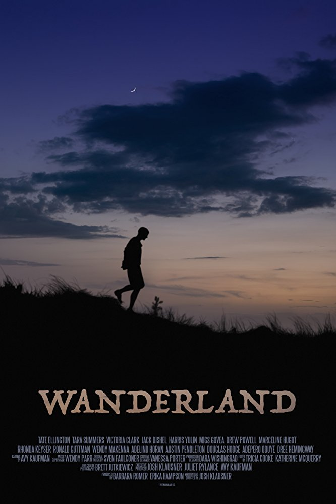 Wanderland (2018) AMZN WEB-DL AAC2 0 H 264-NTG