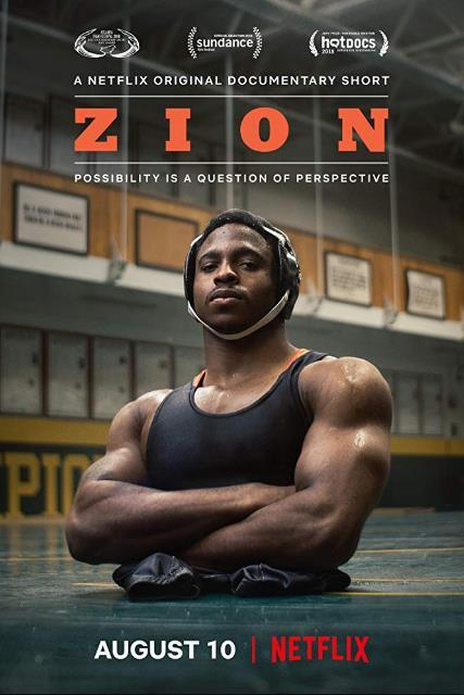 Zion 2018 480p NF WEB-DL WPT