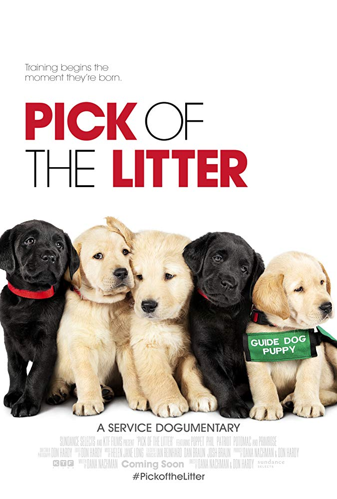 Pick of the Litter 2018 DOCU WEB-DL XviD AC3-FGT