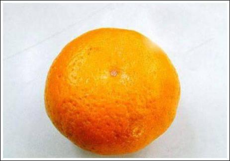 artikel dari haxims.blogspot.com