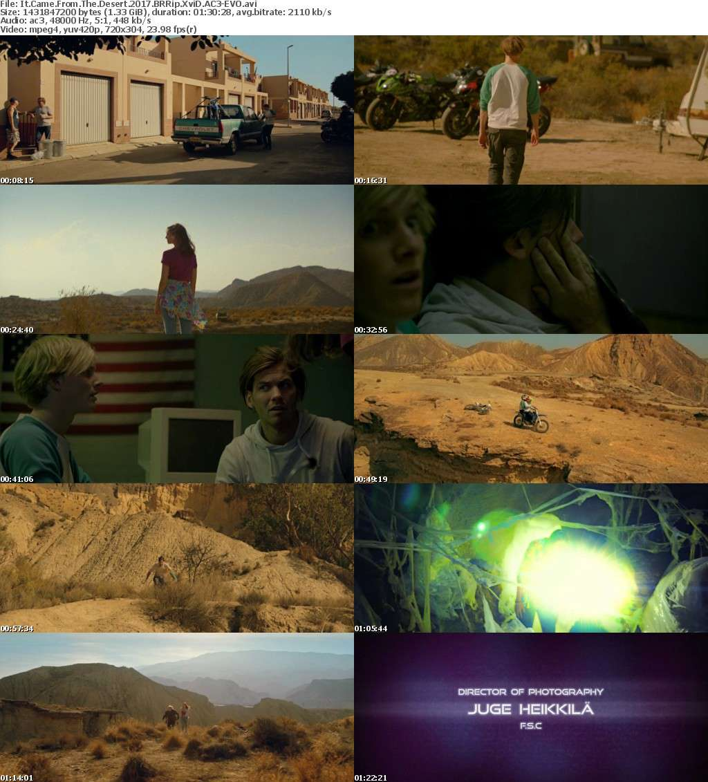 It Came From The Desert 2017 BRRip XviD AC3-EVO
