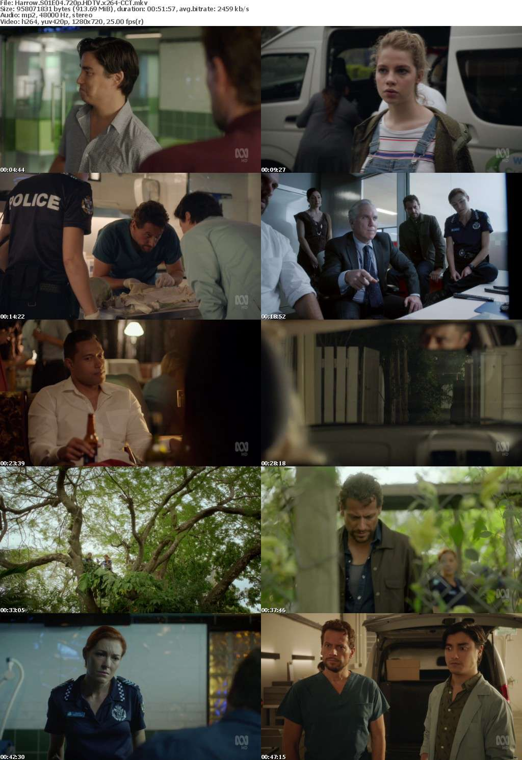 Harrow S01E04 720p HDTV x264-CCT