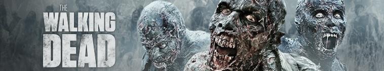 The Walking Dead S08E15 720p HDTV x264-AVS