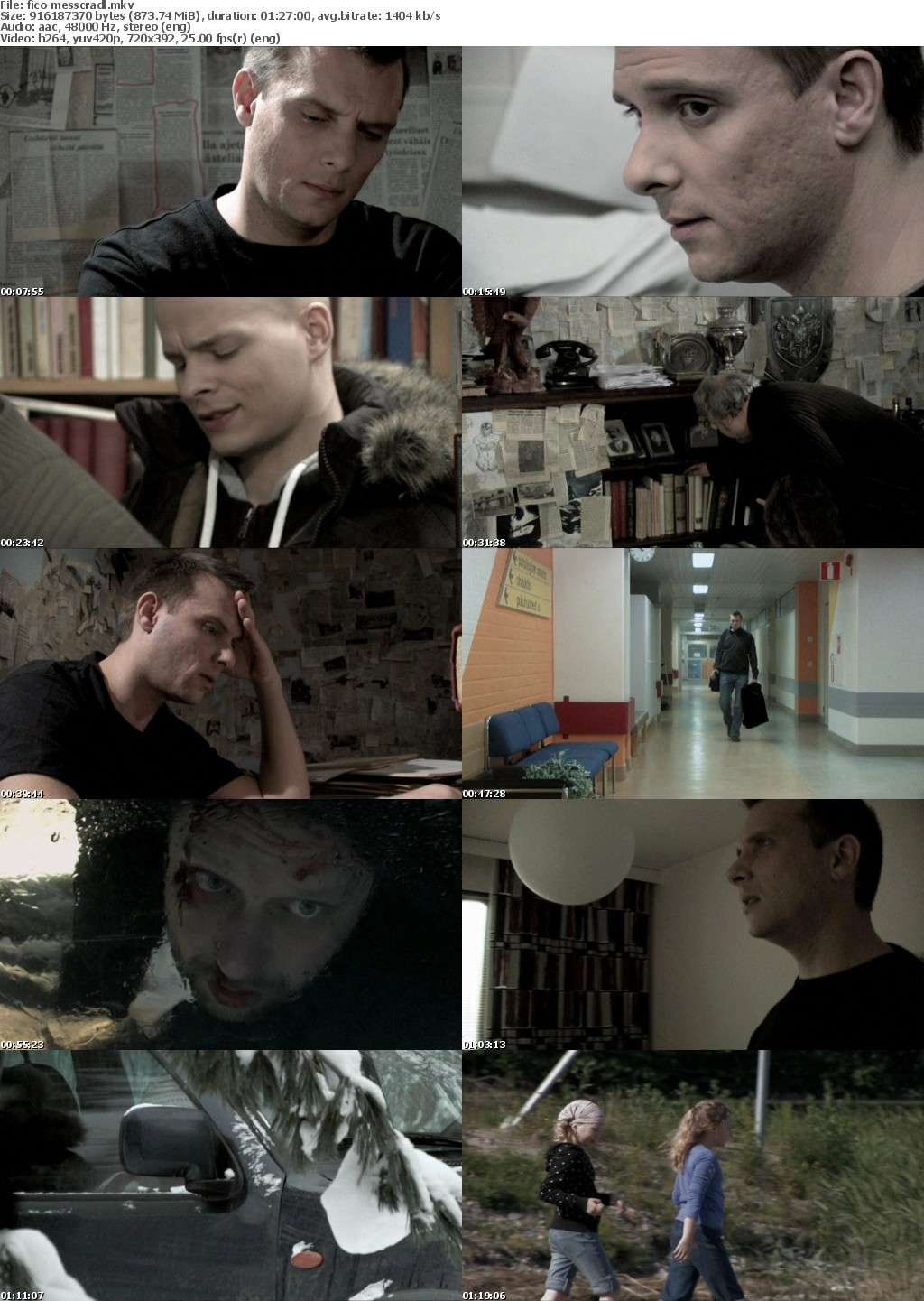 Messenger In The Cradle 2010 DVDRip x264-FiCO