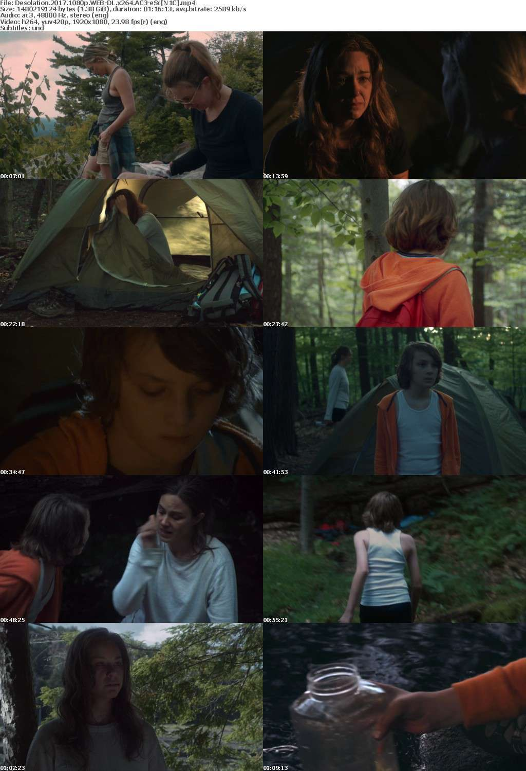 Desolation (2017) 1080p WEB-DL x264 AC3-eSc
