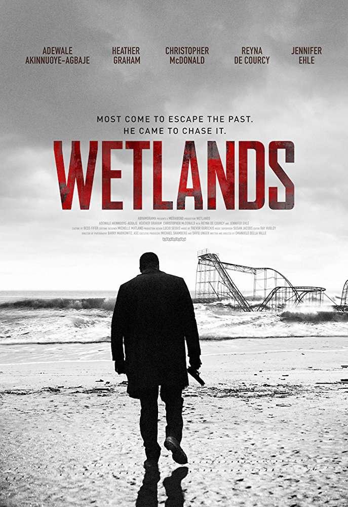 Wetlands 2017 720p WEB-DL DD5 1 H264-CMRG[EtHD]