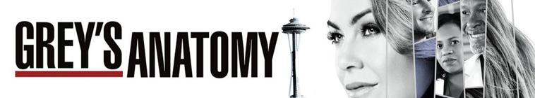 Greys Anatomy S14E20 MULTi 1080p HDTV x264-SRiZ