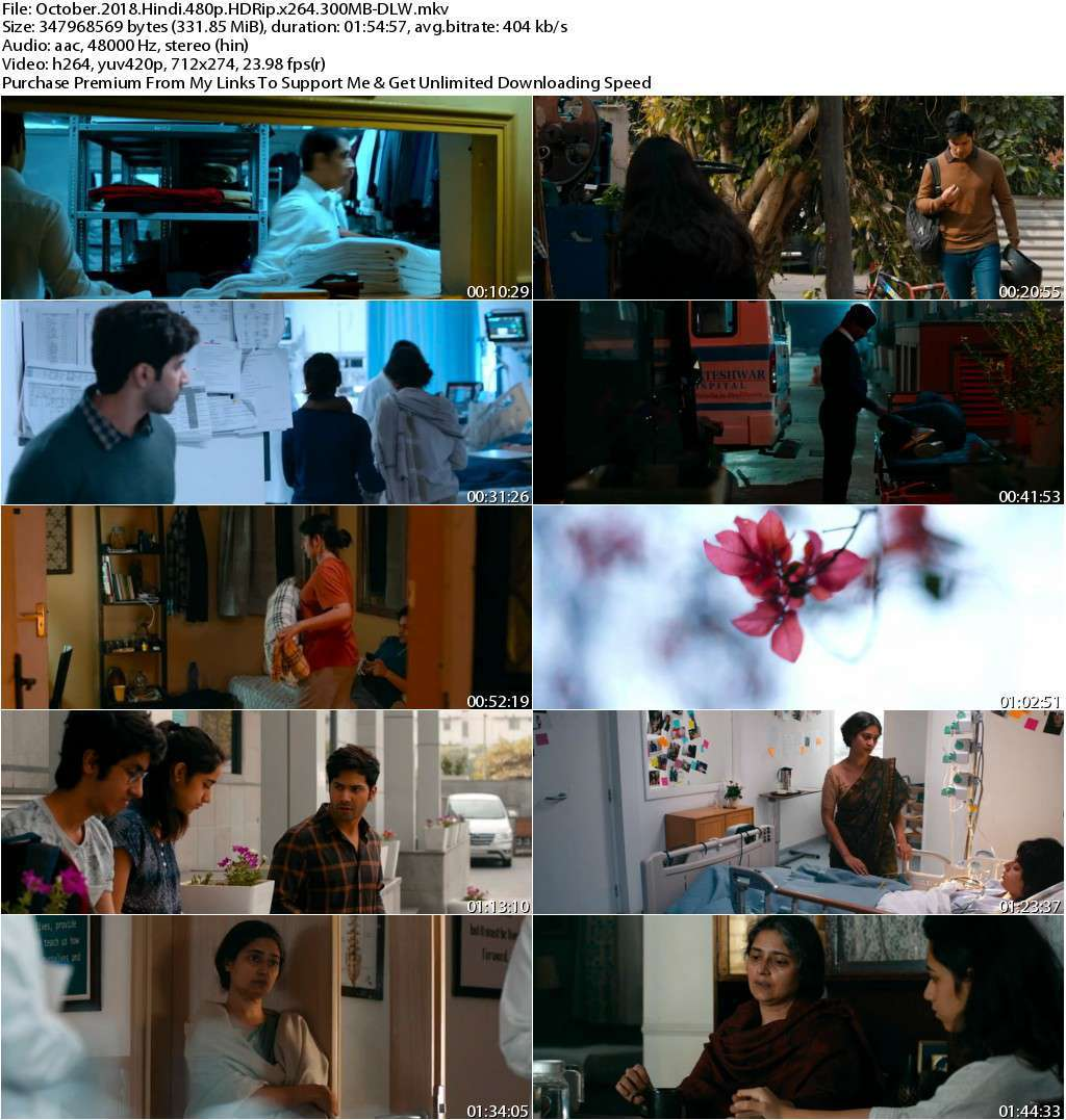 October (2018) Hindi 480p HDRip x264 300MB-DLW