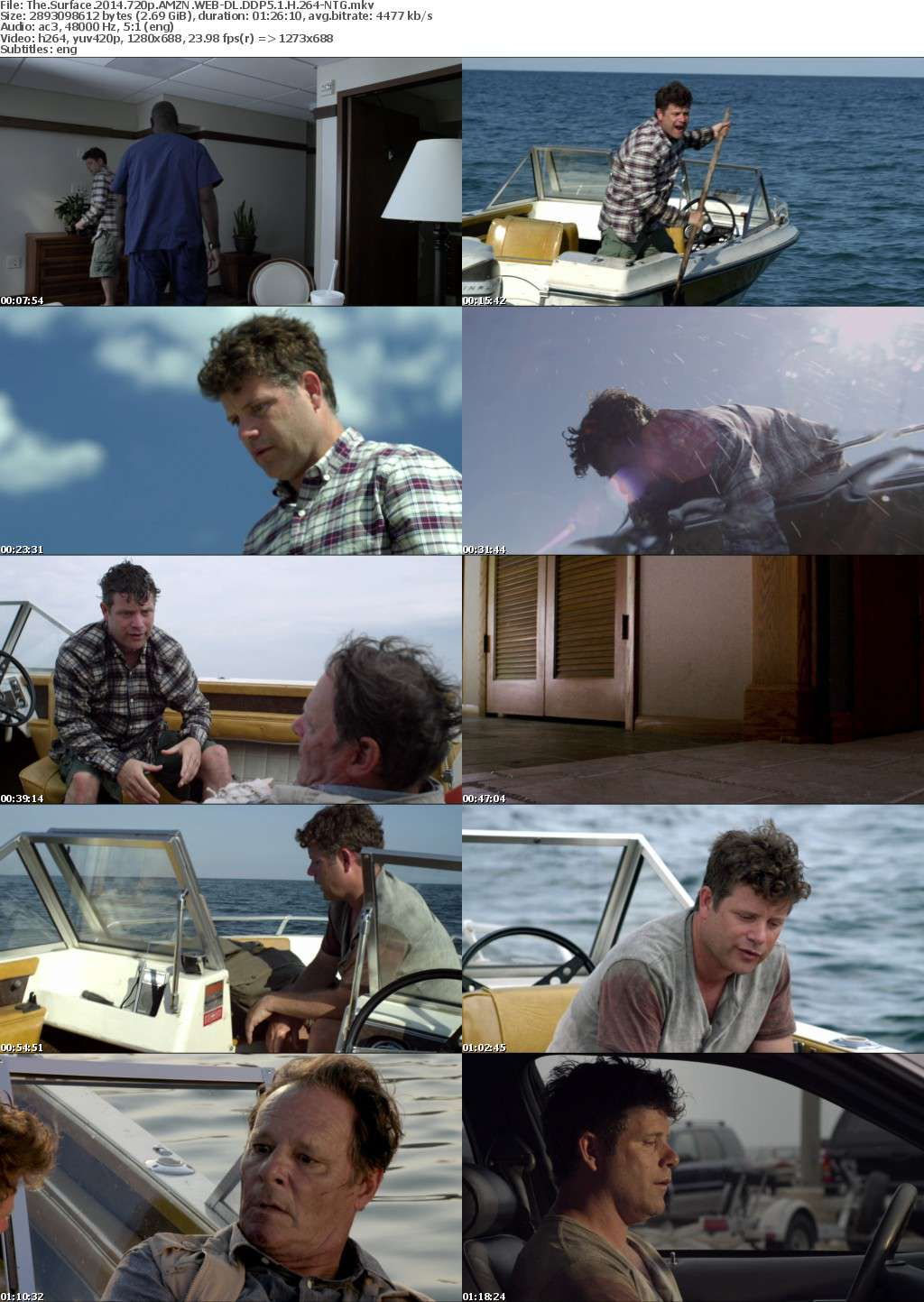 The Surface (2014) 720p AMZN WEB-DL DDP5.1 H 264-NTG