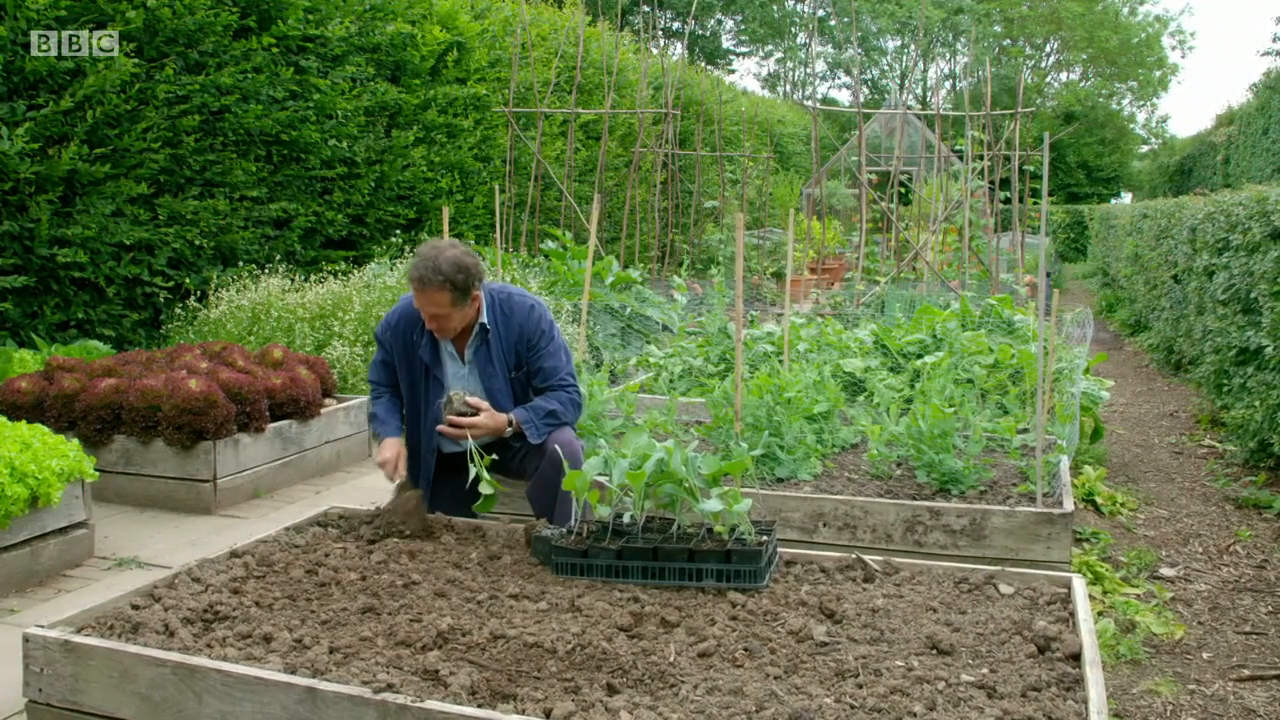 Gardeners World S51E17 720p iP WEBRip AAC2 0 x264-SOIL