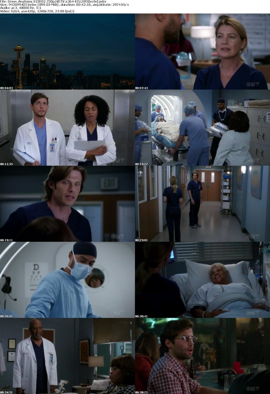 Greys Anatomy S15E02 720p HDTV x264-KILLERS