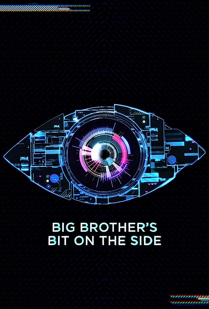 Big Brothers Bit On The Side S17E20 HDTV x264-PLUTONiUM