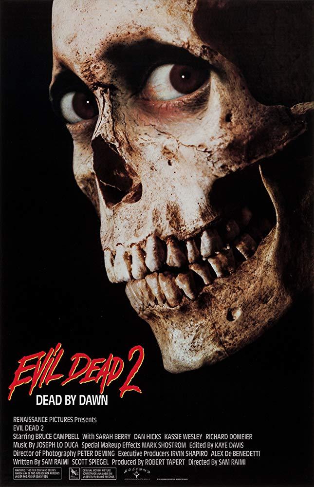 Evil Dead II 1987 BluRay 10Bit 1080p DD5 1 H265-d3g
