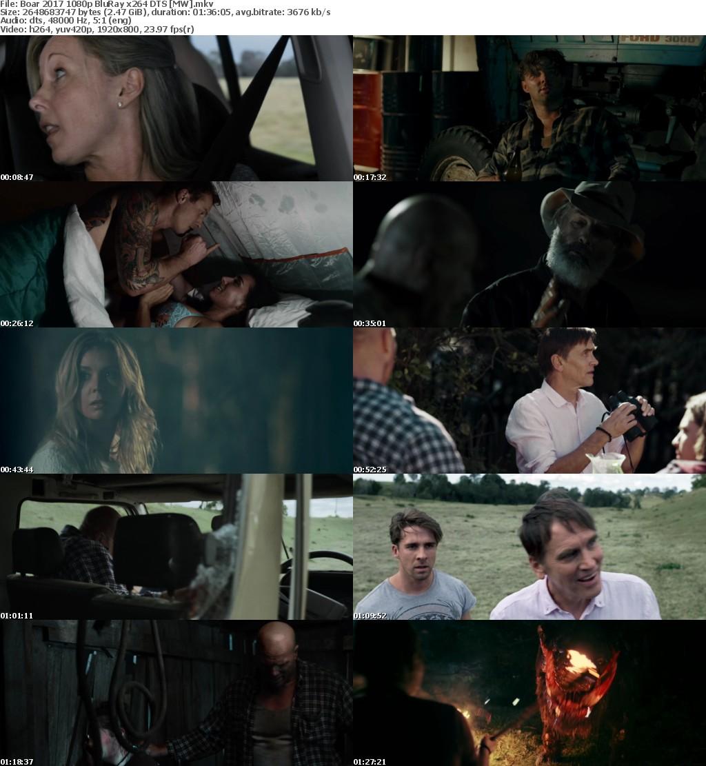 Boar (2017) 1080p BluRay x264 DTS MW