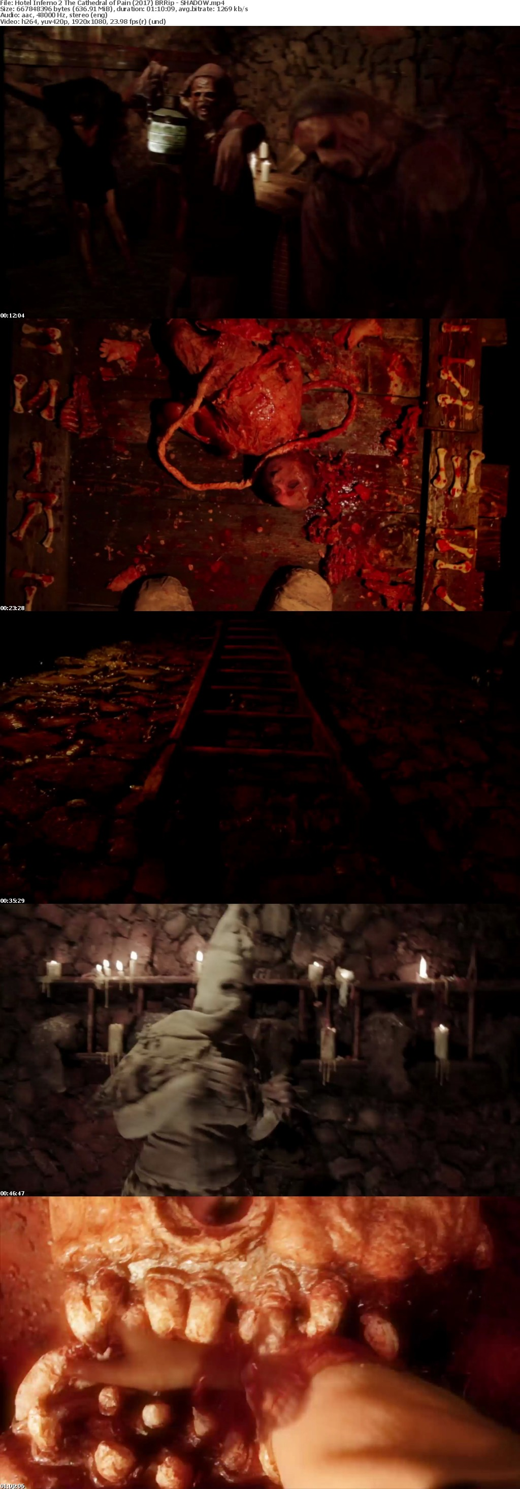 Hotel Inferno 2 The Cathedral of Pain (2017) BRRip - SHADOW[TGx]