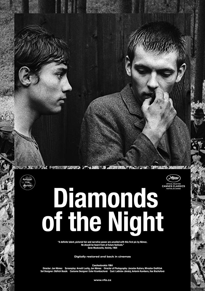 Diamonds of the Night 1964 BDRip x264-GHOULS