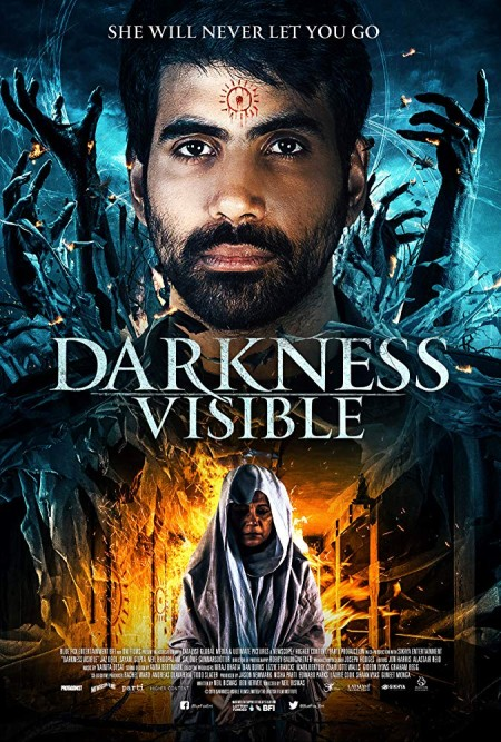 Darkness Visible 2019 HDRip AC3 X264-CMRG
