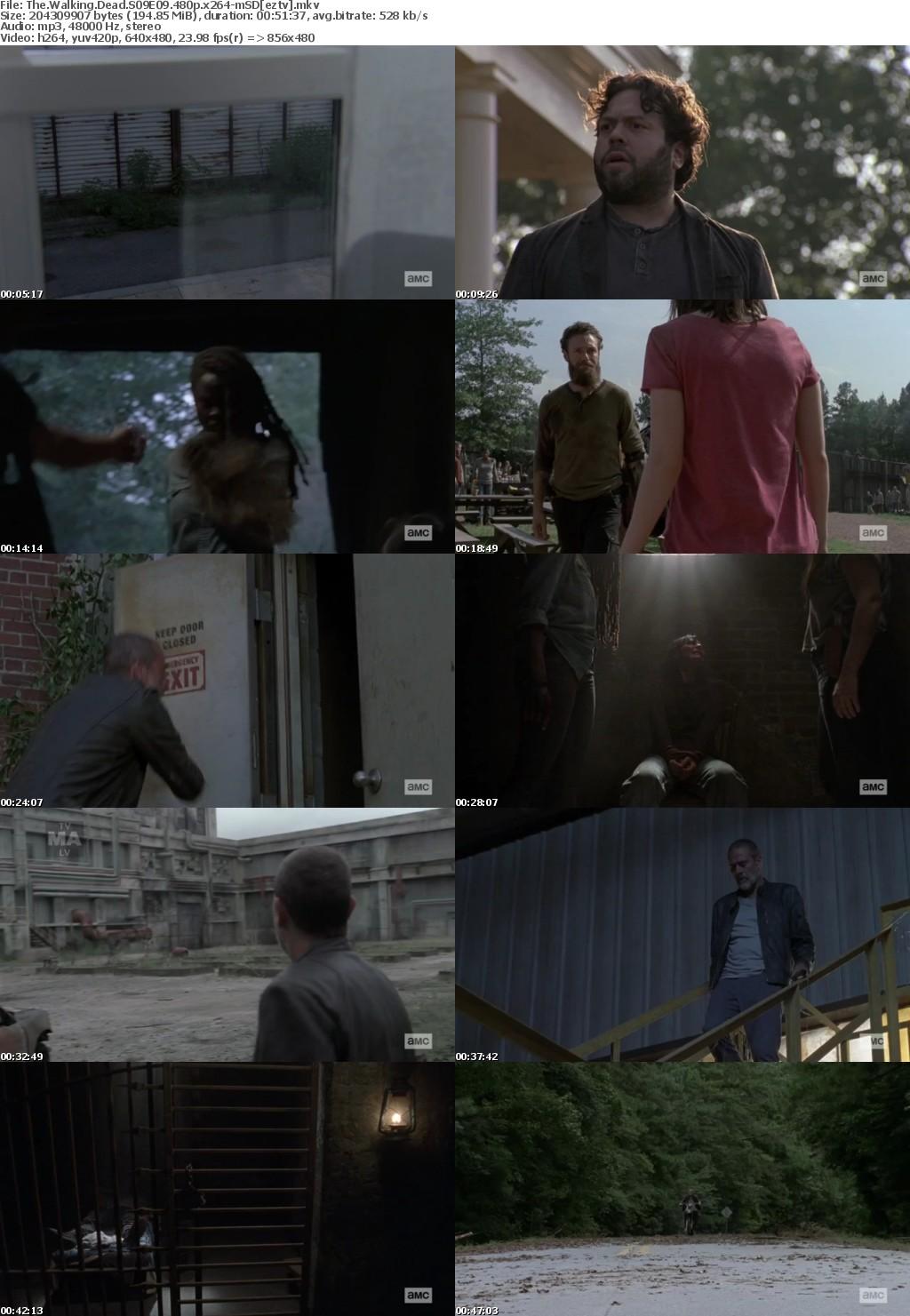 The Walking Dead S09E09 480p x264-mSD