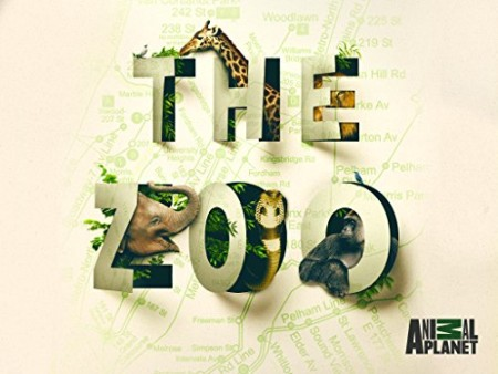 The Zoo US S03E04 Otter Under the Weather 720p WEBRip x264-CAFFEiNE