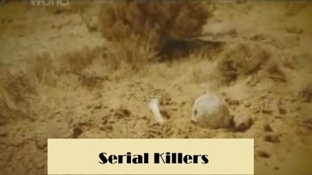 Crimes That Shook The World S02E07 Dennis Nilsen PDTV x264-UNDERBELLY