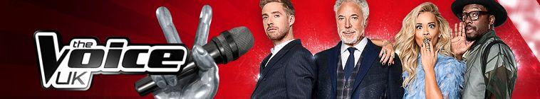 The Voice UK S08E12 480p x264-mSD
